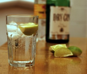 Gin_and_Tonic_with_ingredients-300x256