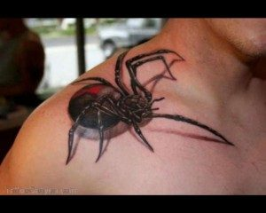19415-3d-spider-tattoo-w630vitamin-ha-vitamin-tattoo-design-1280x1024-300x240