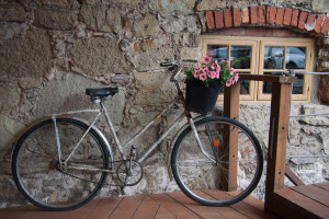 Old bicycle carrying flowers ttp://barnimages.com/