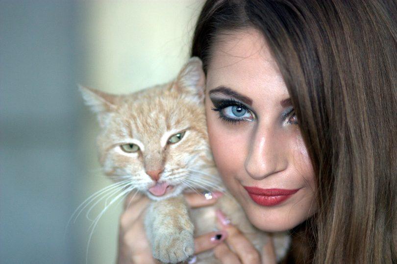 felle brune aux yeux bleus portant un chat orange et blanc