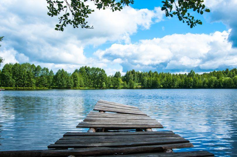 ponton devant un lac dans un parc