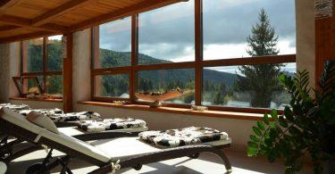 transats dans un spa avec vue sur la nature