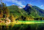 vue sur lac dans un parc vert