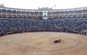spectacle de tauromachie dans une arene avec un torero et un taureau